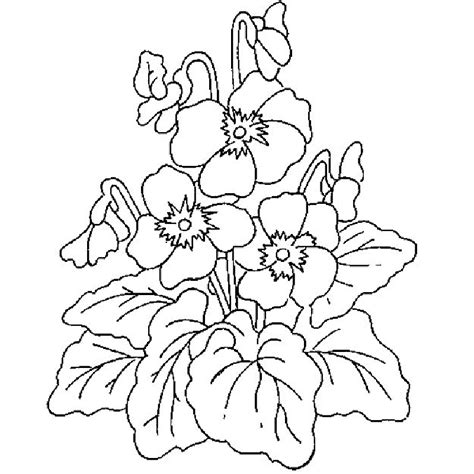 online coloring pages of flowers free printable coloring pages of flowers az coloring pages