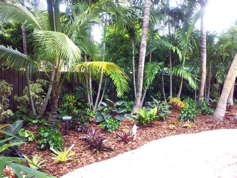 Tropical Backyard Landscaping Ideas Tropical Paradise Backyard Makeover Tropical Landscape Miami By Gardening