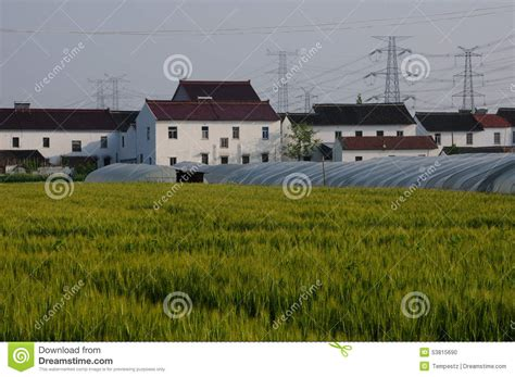 greenhouses advanced technology for protected horticulture books greenhouses covered with plastic stock photo