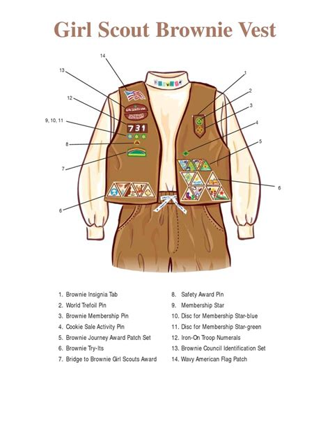 cadette sash diagram brownie vest layout scouts brownies