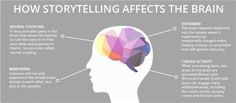 how storytelling affects the brain cultural detective