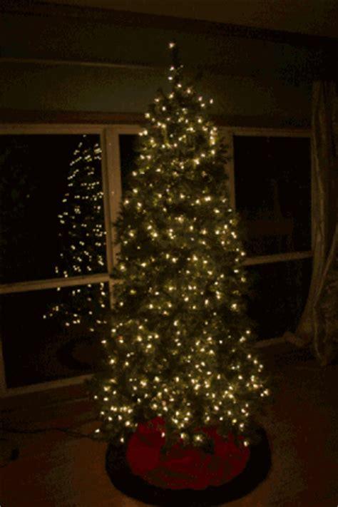 tree lights tips tree lighting tips 28 images tree lighting tips from