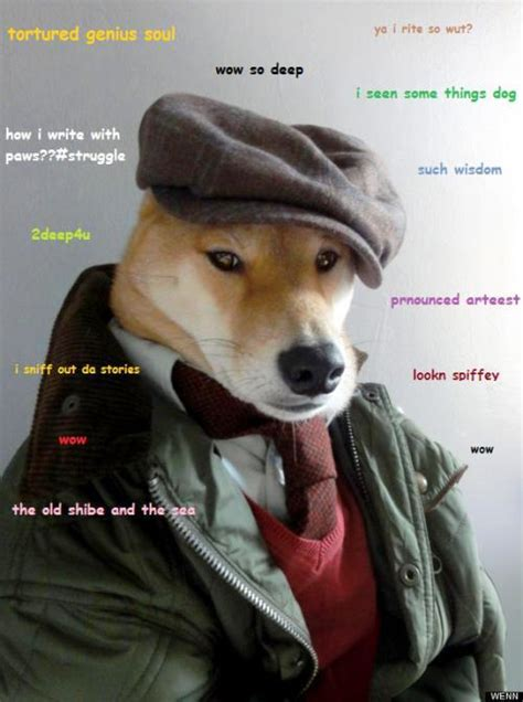 Best Doge Meme - doge meme the best of doge
