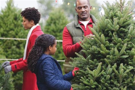 home depot christmas tree return policy garland wreaths the home depot canada