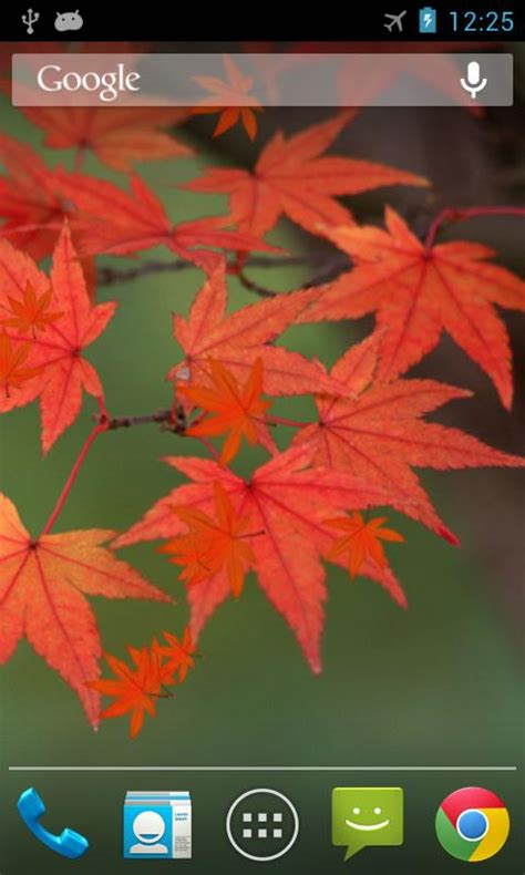 Leaf Live Wallpaper by Maple Leaf Live Wallpaper Android Apps On Play
