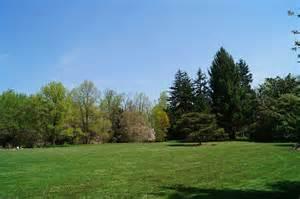 free photo park yard trees landscape free image on