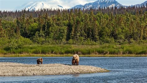 Alaska Pacific Mba Program by Alaska Pacific Northwest Expedition Cruises Mundy