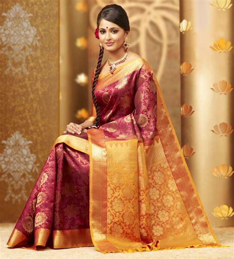 designer pics anushka shetty in sweet designer sarees saree dreams