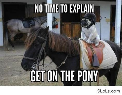 Funny Pony Memes - no time to explain get on the pony