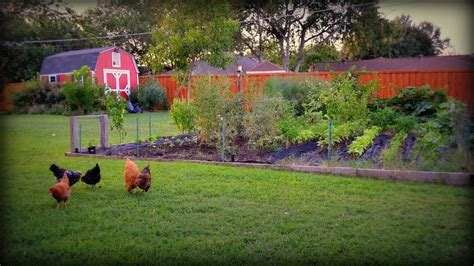 A Fall Garden Why Bother The Garden Troubadour Fall Garden Vegetables