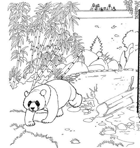dibujos para colorear zoo 205 ndice de dibujos zoo