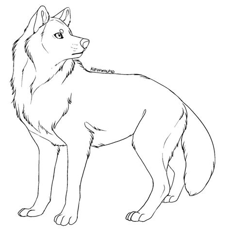 how to color lineart free lineart wolf by kipine on deviantart