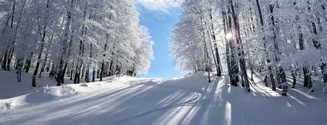 winter images greece vacation packages sightseeing greek island tours