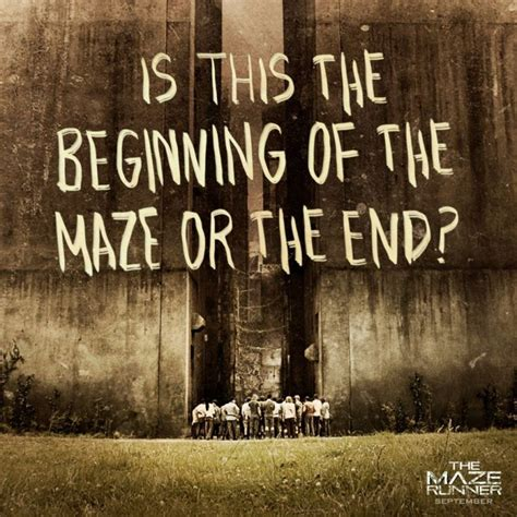 maze runner film order movie quotes the maze runner film photo the maze