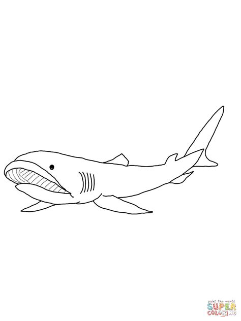 shark open mouth coloring pages grig3 org