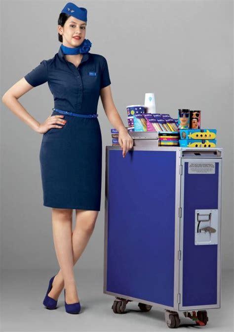 indigo airline aviation and more indigo