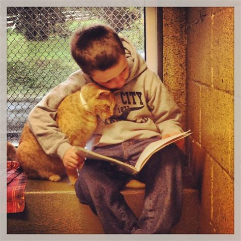 animal butties books read to cats with the book buddies program at the