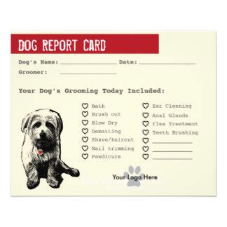 cat boarding report card template 13 images of cat sitting report card template geldfritz net