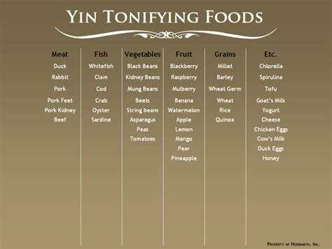 yin yang nutrition for dogs maximizing health with whole foods not drugs books and cooling foods for pets yin and yan in dogs