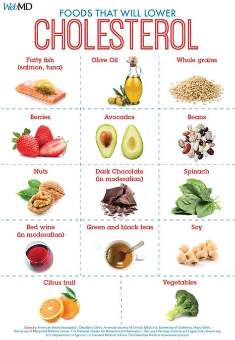 healthy fats to lower cholesterol 25 best ideas about lower your cholesterol on