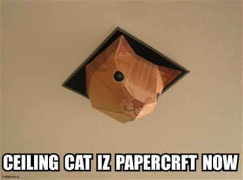 Ceiling Cat Papercraft - tubbypaws