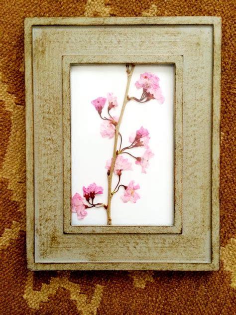 in framed craft framed pressed flowers pumpkin