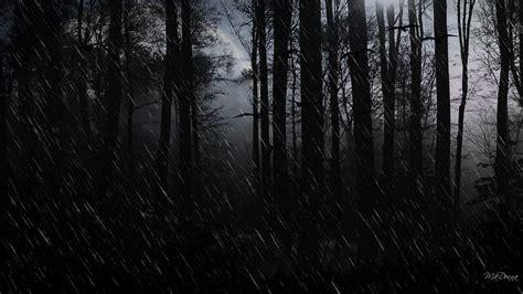 hd dark woods bacgrounds   pixelstalknet