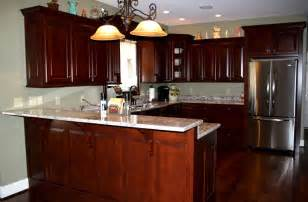 Kitchen Cabinets Renovation by Re Nu Kitchen Amp Bath Announce Winter Specials On Kitchen