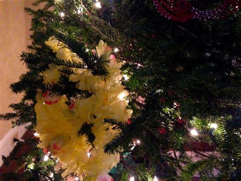 the magic christmas tree toni bologna