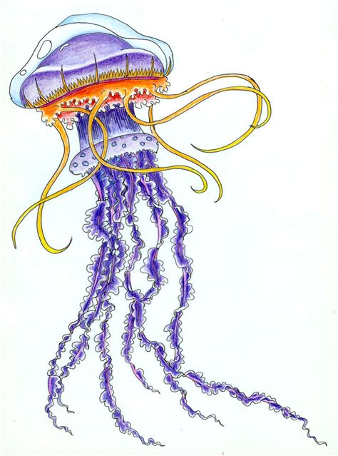 tribal jellyfish tattoo jellyfish designs cliparts co