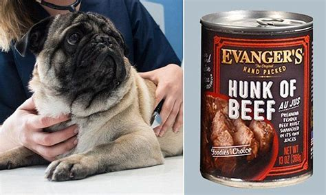 evangers food recall evanger s recalls pentobarbital contaminated food