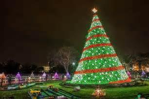 national christmas tree lighting to feature miss piggy