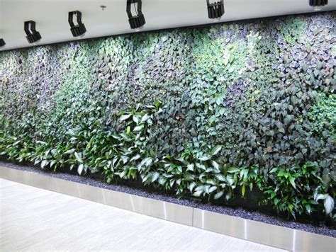 indoor hydroponic wall garden modern hydroponic systems for the home and garden