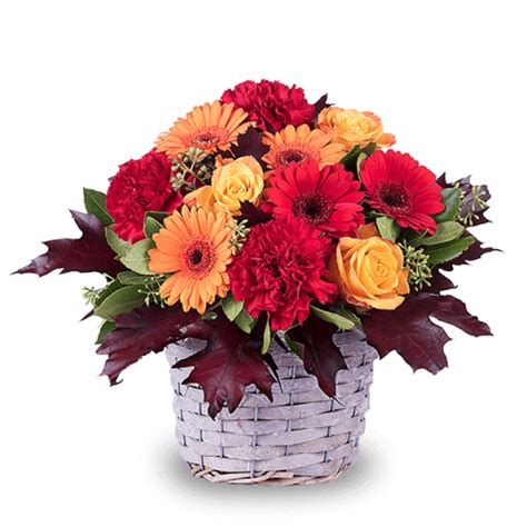 fiori per ringraziare mazzi di fiori per buon compleanno zb07 pineglen
