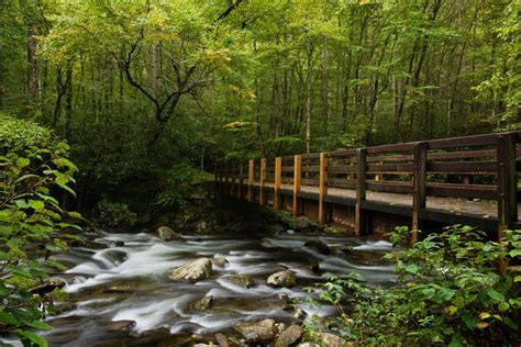 5 Bedroom Cabins In Gatlinburg Tn top 5 things to do in the smoky mountains for nature
