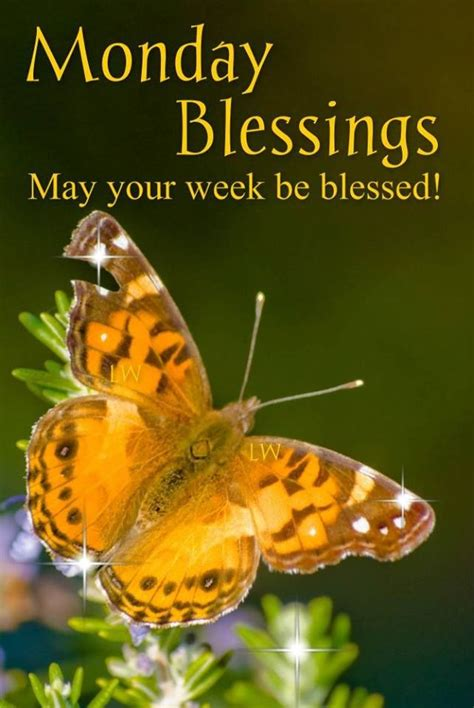 monday blessings   week  blessed pictures