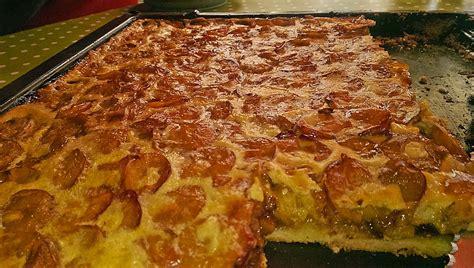 pizza kuchen chefkoch els 228 sser mandel mirabellen kuchen atthena chefkoch de