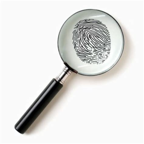 Criminal Background Investigation The Client And Sk Investigation Services