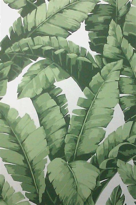 banana tree wallpaper download banana tree wallpaper project tiki bar pinterest big