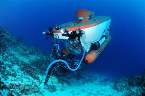 diversity and inclusion the submarine way what underwater taught me about inclusion books exploring bonaire s reef by submarine