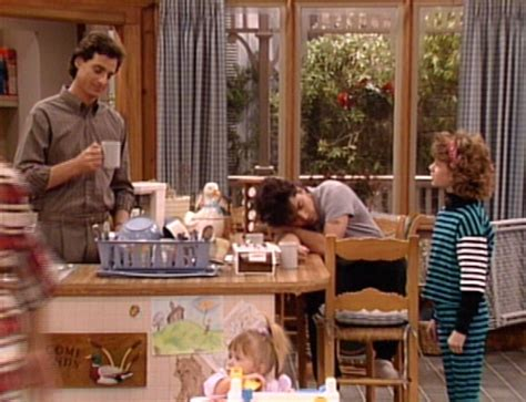 full house wiki fogged in full house