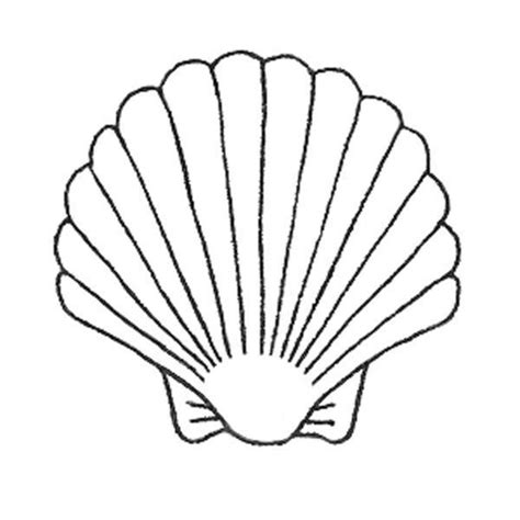seashell template image 1 l mermaid costuming ariel and prince