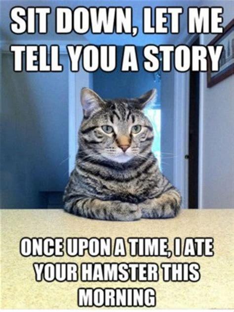 Cat Sitting At Table Meme - funniest cat quotes dance quotesgram