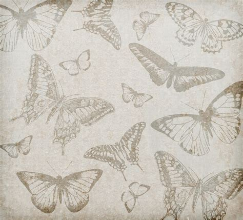 butterfly old vintage free ppt backgrounds for your butterfly background vintage free stock photo public