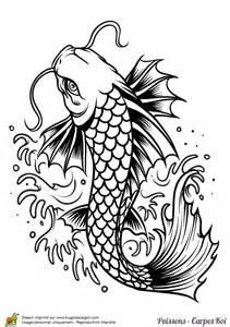 dessin d une carpe nageant dans un torrent 224 colorier