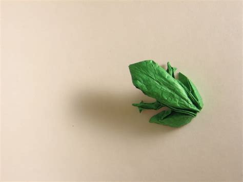 Realistic Origami - realistic frog origami 2016