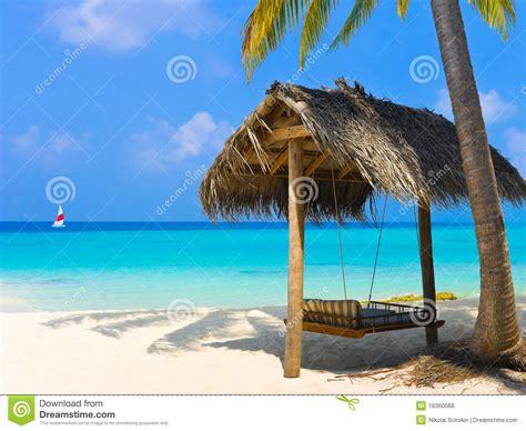 tropical swing tropical paradise at maldives royalty free stock image