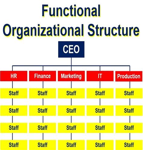 What Is The Best Definition Of A Functional Resume by Functional Organizational Chart Definition Organization