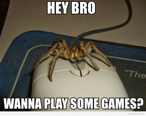 Spider Bro Meme - memes 3 girls and randomness