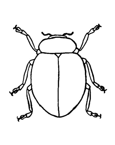 beetle free coloring pages